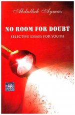 No Room for Doubt: Selective Essays for Youth